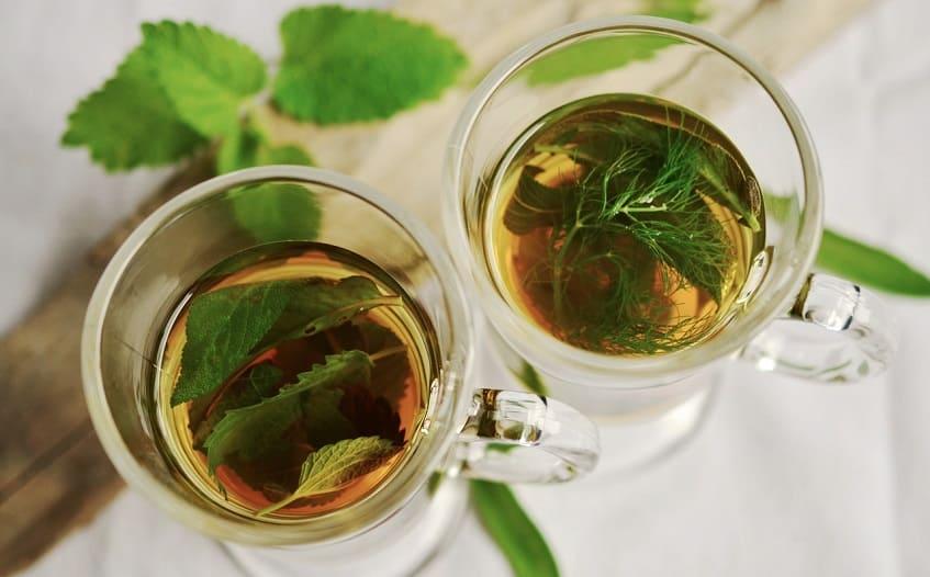 17 09 herbal tea herbs tee mint 159203